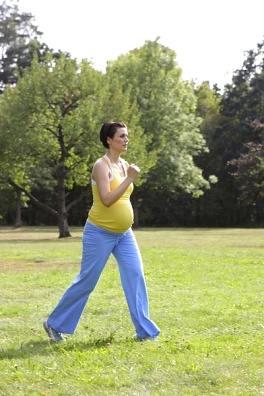 gewichtszunahme fitness